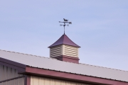 Vented Cupola with Weather Vane