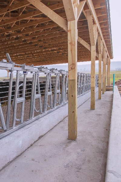 Concrete Work for Heifer Barn