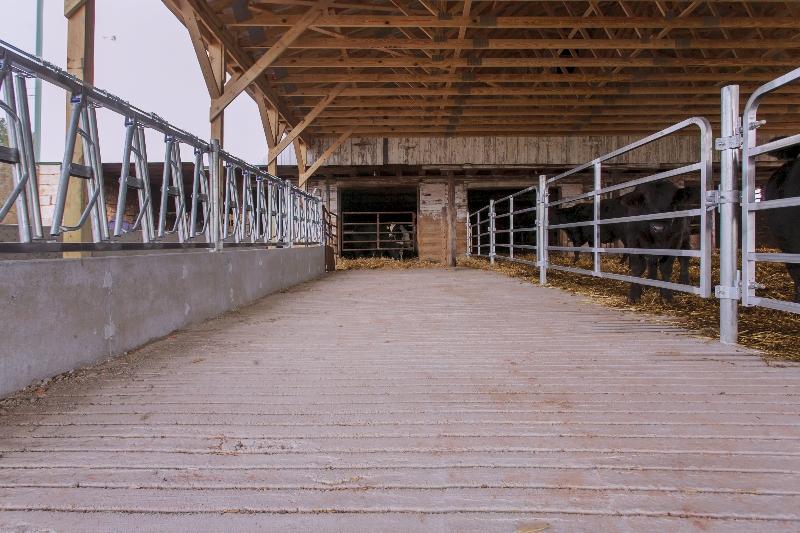 Concrete Slats for Heifer Barn