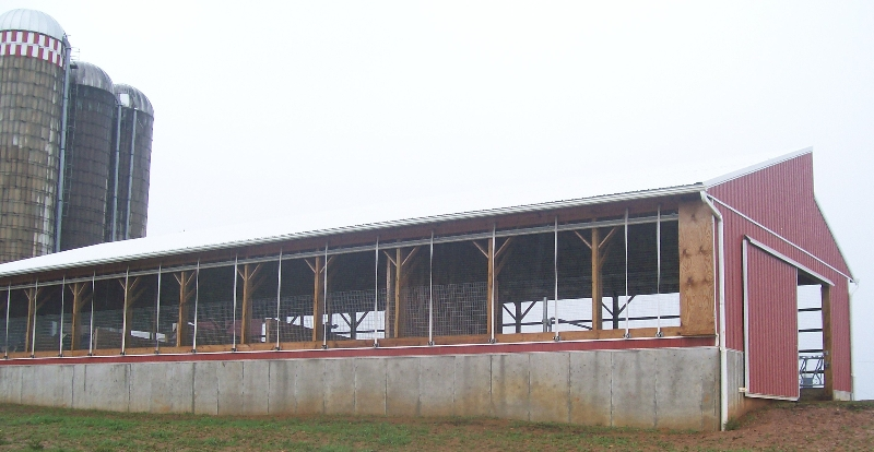 Heifer Barn with 6\' Poured Walls