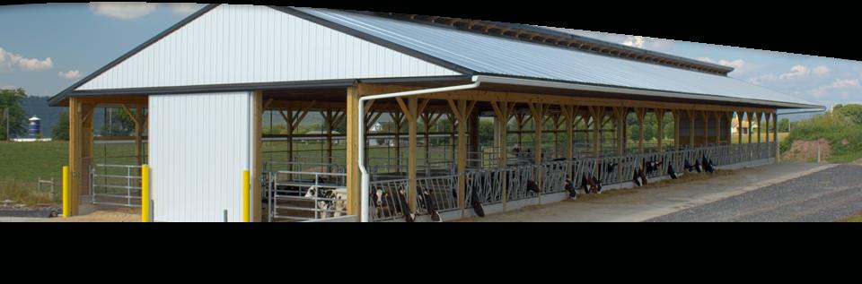 Heifer Barns Custom Pole Buildings