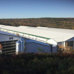 Hillendale, CT -Progress Construction - Oct 2020